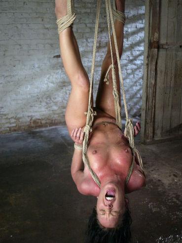 girl girl orgy strap